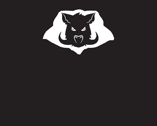 Big Pig Trap